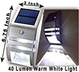 Creative & Mo 40 Lumen Bright Wall Mounted Solar Motion Sensor Light Spot Light - Perfect for Pathway, Patio, Garden, Yard, Deck, Countryside, Driveway, Powered by Sun's Energy