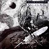 Secrets of the Beehive by David Sylvian (0100-01-01)