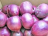北海道産 紫玉ねぎ(赤玉ねぎ)5kg 【発送期間】9月上旬~3月下旬