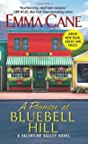 A Promise at Bluebell Hill: A Valentine Valley Novel