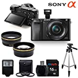 Sony Alpha a6000 ILCE6000 Interchangeable Lens Camera