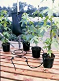 INSTANT DRIP WATERING GRAVITY FED IRRIGATION PLANTS GREENHOUSE SYSTEM WATER KIT