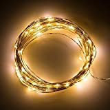 33Ft Copper Wire LED Starry Lights, 12V DC LED String Light, USB Powered Includes Remote Control Dimmer, with 100 Individual Leds Warm White
