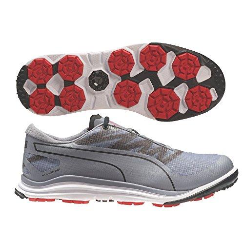 PUMA Men's Biodrive Golf Shoe, Quicksilver/Black, 11 M US