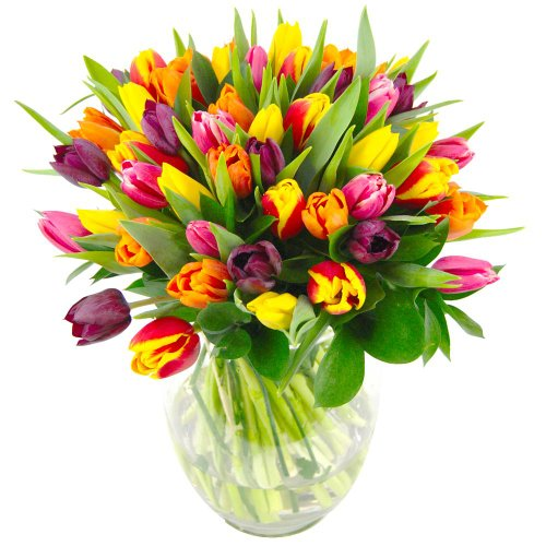 Clare Florist Mixed Tulips Fresh Flower Bouquet