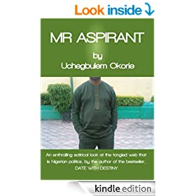 Mr Aspirant, Nigerian Politics