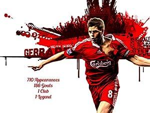 Steven Gerrard 16x12 Inch Canvas - Career Stats Framed Picture Poster Print