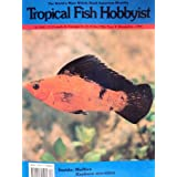 Tropical Fish Hobbyist (Mollies; Rasbora maculata, XXXIX, No.4)
