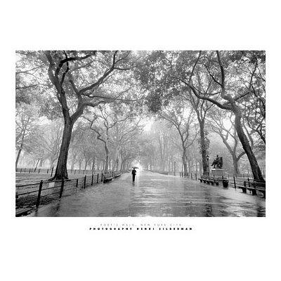 Henri Silberman Poet's Walk New York City Art Print Poster - 16x20