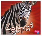 Zebras (African Animals)
