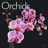Orchids Calendar - 2016 Wall calendars - Garden Calendars - Flower Calendar - Monthly Wall Calendar by Avonside