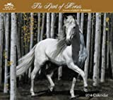 2014 The Spirit of Horses by Lesley Harrison Wall Calendar