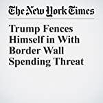 Trump Fences Himself in With Border Wall Spending Threat | Carl Hulse