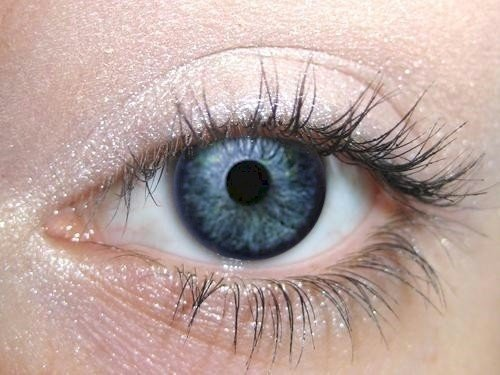 Eye Makeup Ylang Ylang Eye Shadow Eyeliner | Bright Green Natural Eyeshadow Pro Pigment | Cruelty-Free Vegan | Not Bare Minerals, MAC