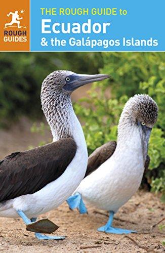 The Rough Guide to Ecuador & the Galápagos Islands (Rough Guide Ecuador) (Rough Guide To South America compare prices)