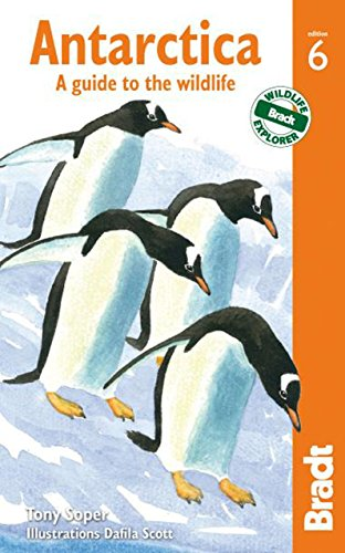 antarctica-a-guide-to-the-wildlife-bradt-travel-guides-wildlife-guides