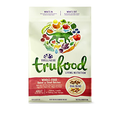 Wellness TruFood Baked Blends Natural Grain Free Dry Cat