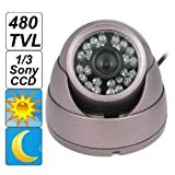 SecurityIng &#8211; Violet Conch Shape, Dome IR 480TVL 1/3 Sony CCD Video CCTV Security Camera, for Various Indoor Environment Day Night Surveillance Camera