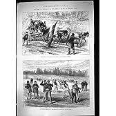 1889 のオーストラリア Coranderrk Lilydale のブーメランの Coranderrk の土人ビクトリア