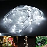 LE® Solar Rope Lights, 23ft, Waterproof, 50 LEDs, 1.2 V, Daylight White, Portable, with Light Sensor, Outdoor Rope Lights, Ideal for Christmas, Wedding, Party