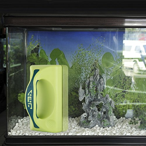 Urlife small green magnetic aquarium fish tank glass algae for How to remove algae from fish tank glass