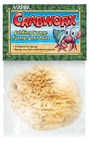 Hagen Crabworx Drinking Sponge
