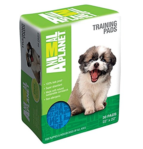 ANIMAL PLNT TRAINING PAD by ANIMAL PLANET MfrPartNo 23404 (Animal Training Pads compare prices)