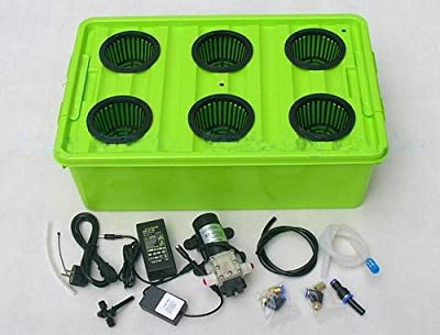 Gowe Aeroponics hydroponic system 6sites of cup with cycle timer
