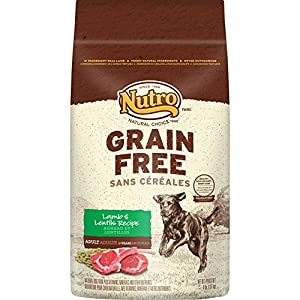 NUTRO Grain Free Adult Lamb and Lentils Recipe Dry Dog Food 4 Pounds