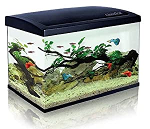 Classica eco 60 aquarium 63l fish tank kit led lighting for Fish tank with filter and heater