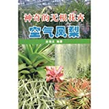 img - for magic rootless flower: Air pineapple (paperback) book / textbook / text book