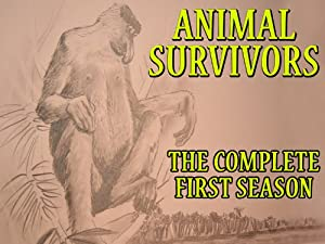 Animal Survivors, Season 1, Episode 4