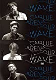 "2014 ARENA TOUR""WAVE""@OSAKA-JO HALL