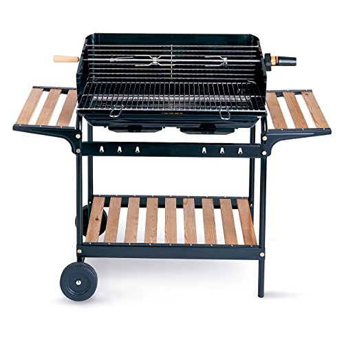 Rayen AB12 Barbecue Acier Inoxydable Multicolore 76 x 46 x 70 cm