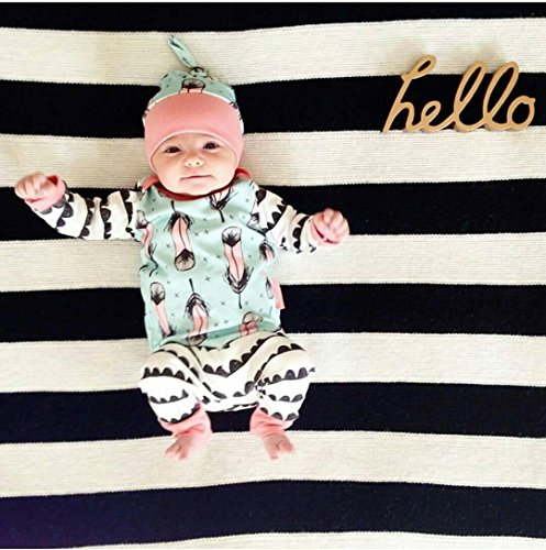 2pcs Kids Baby Girl Boy Casual Clothes Tops T-shirt+Pants Outfits Set (18-24 Months, Feather)