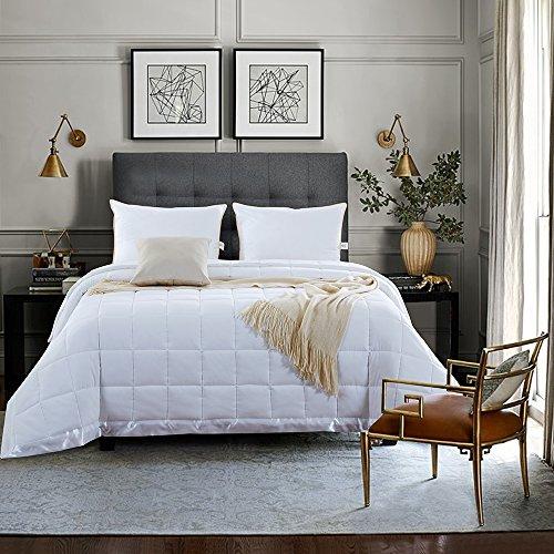 NEWLAKE Lightweight White Down Alternative Quilted Blanket Warmth Duvet,Full/Queen Size