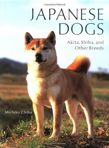 Japanese Dogs Akita Shiba And Other Breeds