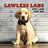 Lawless Labs: Good Labs Gone Bad