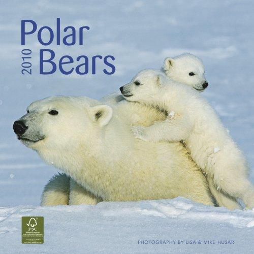 Polar Bears 2010 Calendar (Wall Calendar)
