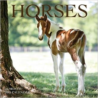 Horses Mini Wall Calendar 2015