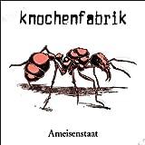 Ameisenstaat (Re-Issue) [Vinyl LP]
