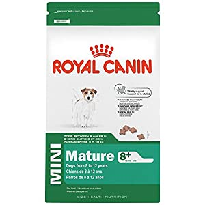 ROYAL CANIN SIZE HEALTH NUTRITION MINI Mature 8+ dry dog food, 2.5-Pound