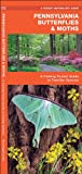 img - for Pennsylvania Butterflies & Moths: A Folding Pocket Guide to Familiar Species (Pocket Naturalist Guide Series) book / textbook / text book