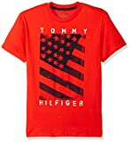 Tommy Hilfiger Boys Little Neg Flag Tee, Flame Scarlet, 3T