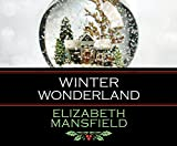 img - for Winter Wonderland book / textbook / text book