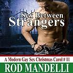 A Modern Gay Sex Christmas Carol #11: Sex Between Strangers (M/M Outdoor Hookup Erotica) | Rod Mandelli