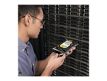 WD-Re-(WD6001FSYZ)-6TB-Internal-Hard-Disk