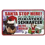 Santa Stop Here Pet Sign - Miniature Schnauzer