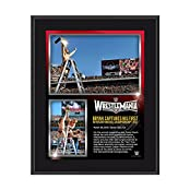 Daniel Bryan WrestleMania 31 10 x 13 Photo Collage Plaque