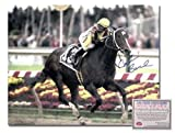 51n6QDON1iL. SL160  sports  2009 Preakness Stakes